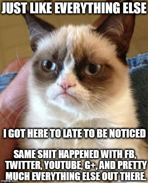 Im Always To Late | JUST LIKE EVERYTHING ELSE I GOT HERE TO LATE TO BE NOTICED SAME SHIT HAPPENED WITH FB, TWITTER, YOUTUBE, G+, AND PRETTY MUCH EVERYTHING ELSE | image tagged in memes,grumpy cat,grr,sucks,humbug | made w/ Imgflip meme maker
