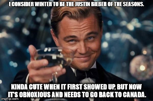 Leonardo Dicaprio Cheers Meme | I CONSIDER WINTER TO BE THE JUSTIN BIEBER OF THE SEASONS. KINDA CUTE WHEN IT FIRST SHOWED UP, BUT NOW IT'S OBNOXIOUS AND NEEDS TO GO BACK TO | image tagged in memes,leonardo dicaprio cheers | made w/ Imgflip meme maker