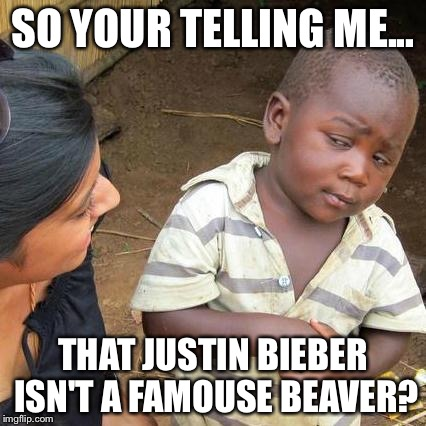 Third World Skeptical Kid Meme | SO YOUR TELLING ME... THAT JUSTIN BIEBER ISN'T A FAMOUSE BEAVER? | image tagged in memes,third world skeptical kid | made w/ Imgflip meme maker
