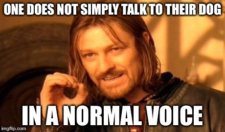 One Does Not Simply Meme | ONE DOES NOT SIMPLY TALK TO THEIR DOG IN A NORMAL VOICE | image tagged in memes,one does not simply | made w/ Imgflip meme maker