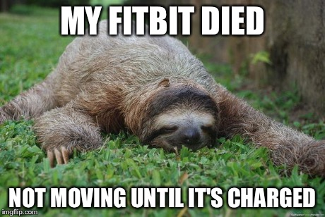 Sleeping sloth | MY FITBIT DIED NOT MOVING UNTIL IT'S CHARGED | image tagged in sleeping sloth | made w/ Imgflip meme maker