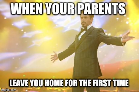 Tony Stark success | WHEN YOUR PARENTS LEAVE YOU HOME FOR THE FIRST TIME | image tagged in tony stark success | made w/ Imgflip meme maker