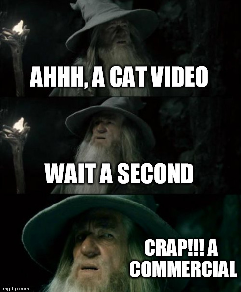 Confused Gandalf Meme | AHHH, A CAT VIDEO WAIT A SECOND CRAP!!! A COMMERCIAL | image tagged in memes,confused gandalf | made w/ Imgflip meme maker
