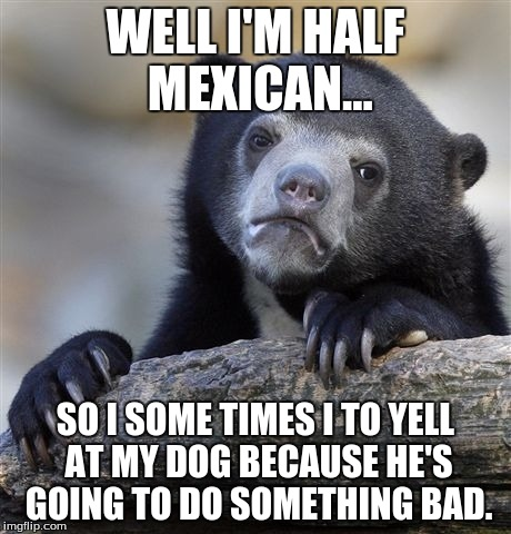 Confession Bear Meme | WELL I'M HALF MEXICAN... SO I SOME TIMES I TO YELL AT MY DOG BECAUSE HE'S GOING TO DO SOMETHING BAD. | image tagged in memes,confession bear | made w/ Imgflip meme maker