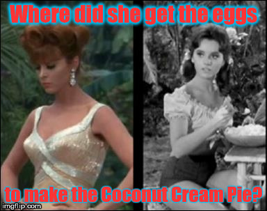 Coconut Cream Pie | Where did she get the eggs to make the Coconut Cream Pie? | image tagged in doctor who,gilligan's island,coconut cream pie | made w/ Imgflip meme maker