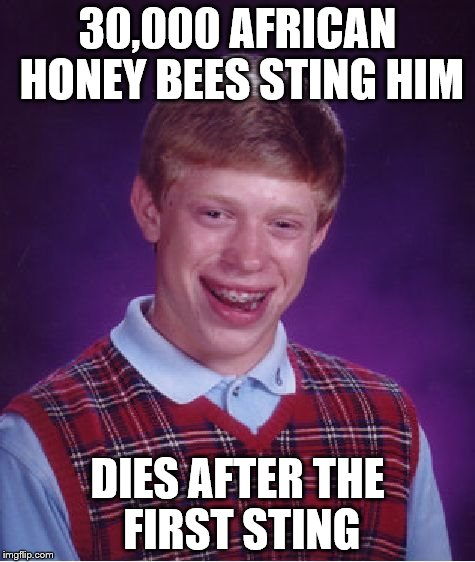 bee sting | 30,000 AFRICAN HONEY BEES STING HIM DIES AFTER THE FIRST STING | image tagged in memes,bad luck brian,bees,dies,sting | made w/ Imgflip meme maker