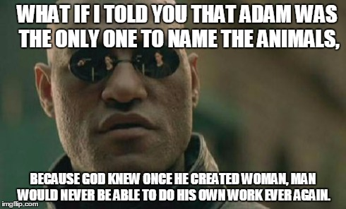 Matrix Morpheus Meme | WHAT IF I TOLD YOU THAT ADAM WAS THE ONLY ONE TO NAME THE ANIMALS, BECAUSE GOD KNEW ONCE HE CREATED WOMAN, MAN WOULD NEVER BE ABLE TO DO HIS | image tagged in memes,matrix morpheus | made w/ Imgflip meme maker
