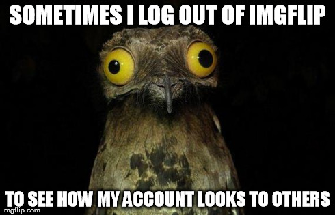 Weird Stuff I Do Potoo Meme | SOMETIMES I LOG OUT OF IMGFLIP TO SEE HOW MY ACCOUNT LOOKS TO OTHERS | image tagged in memes,weird stuff i do potoo,wat | made w/ Imgflip meme maker