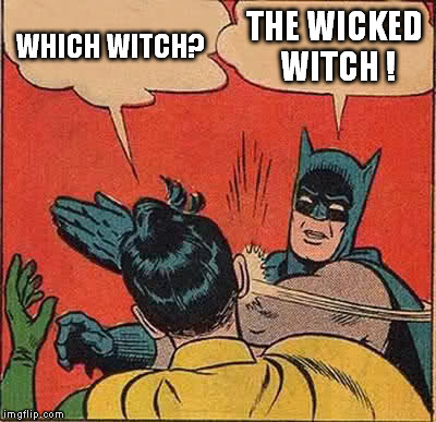 Batman Slapping Robin Meme | WHICH WITCH? THE WICKED WITCH ! | image tagged in memes,batman slapping robin | made w/ Imgflip meme maker
