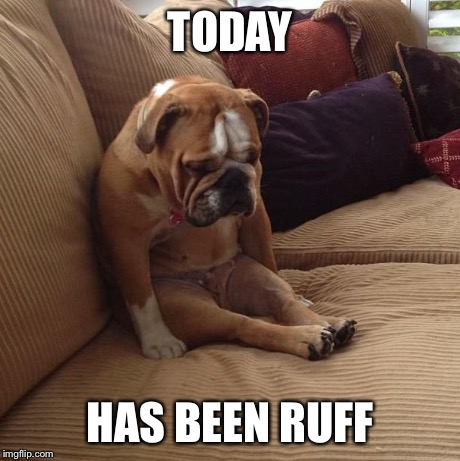 bulldogsad | TODAY HAS BEEN RUFF | image tagged in bulldogsad | made w/ Imgflip meme maker