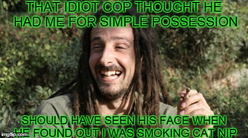 Da Fuzz Man | THAT IDIOT COP THOUGHT HE HAD ME FOR SIMPLE POSSESSION SHOULD HAVE SEEN HIS FACE WHEN HE FOUND OUT I WAS SMOKING CAT NIP | image tagged in hippie,cops,stoned,weed,funny memes,laughing | made w/ Imgflip meme maker