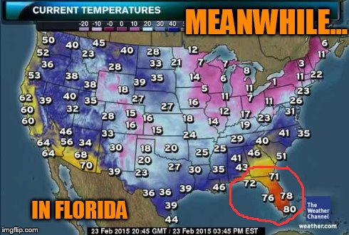 i11lo when in florida, do as the floridians do