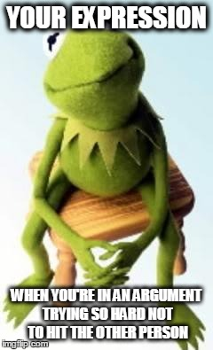 Concerned Kermit | YOUR EXPRESSION WHEN YOU'RE IN AN ARGUMENT TRYING SO HARD NOT TO HIT THE OTHER PERSON | image tagged in concerned kermit | made w/ Imgflip meme maker