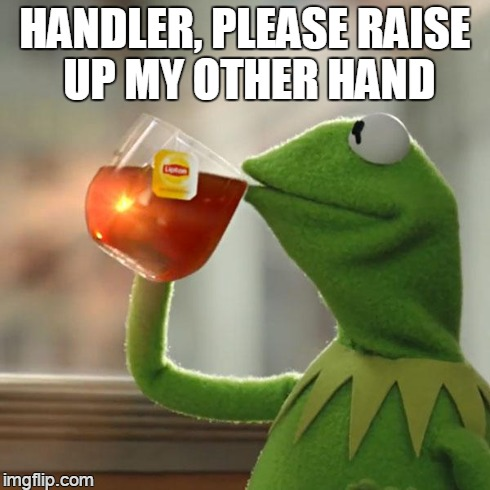 But Thats None Of My Business Meme | HANDLER, PLEASE RAISE UP MY OTHER HAND | image tagged in memes,but thats none of my business,kermit the frog | made w/ Imgflip meme maker