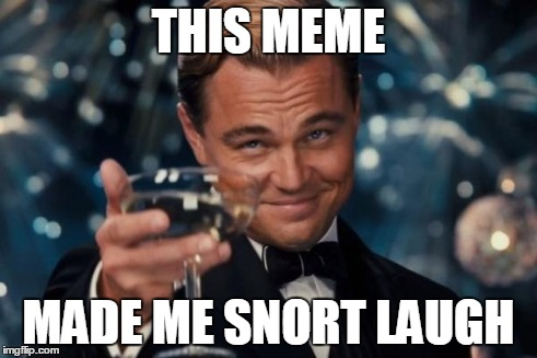 Leonardo Dicaprio Cheers Meme | THIS MEME MADE ME SNORT LAUGH | image tagged in memes,leonardo dicaprio cheers | made w/ Imgflip meme maker