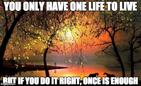 YOU ONLY HAVE ONE LIFE TO LIVE BUT IF YOU DO IT RIGHT, ONCE IS ENOUGH | image tagged in one life | made w/ Imgflip meme maker