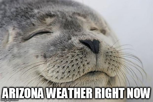 After watching the news about the record breaking cold snap on the East Coast.. | ARIZONA WEATHER RIGHT NOW | image tagged in memes,satisfied seal,weather,cold weather,cold | made w/ Imgflip meme maker