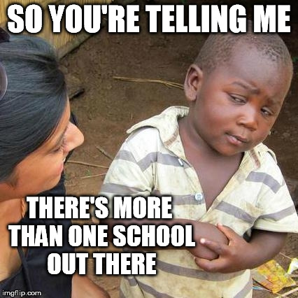 Third World Skeptical Kid Meme | SO YOU'RE TELLING ME THERE'S MORE THAN ONE SCHOOL OUT THERE | image tagged in memes,third world skeptical kid | made w/ Imgflip meme maker