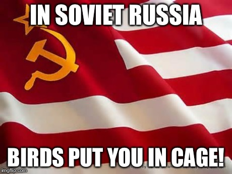 In soviet russia, | IN SOVIET RUSSIA BIRDS PUT YOU IN CAGE! | image tagged in in soviet russia, | made w/ Imgflip meme maker