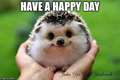 Have A Happy Day Imgflip