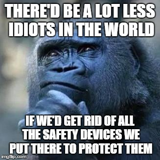 Thinking ape | THERE'D BE A LOT LESS IDIOTS IN THE WORLD IF WE'D GET RID OF ALL THE SAFETY DEVICES WE PUT THERE TO PROTECT THEM | image tagged in thinking ape | made w/ Imgflip meme maker