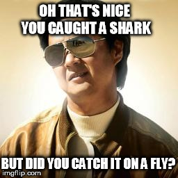 Mr Chow | OH THAT'S NICE YOU CAUGHT A SHARK BUT DID YOU CATCH IT ON A FLY? | image tagged in mr chow | made w/ Imgflip meme maker