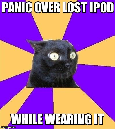 Lost Ipod Cat | PANIC OVER LOST IPOD WHILE WEARING IT | image tagged in anxiety cat | made w/ Imgflip meme maker
