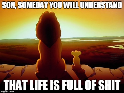 Lion King Meme | SON, SOMEDAY YOU WILL UNDERSTAND THAT LIFE IS FULL OF SHIT | image tagged in memes,lion king | made w/ Imgflip meme maker
