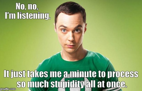 shelly | No, no, I'm listening. It just takes me a minute to process so much stupidity all at once. | image tagged in sheldon,cooper,sheldon cooper | made w/ Imgflip meme maker