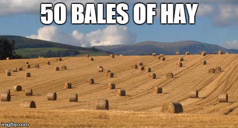 50 bales of hay | 50 BALES OF HAY | image tagged in 50 shades,funny,i have no friends,if you're reading this,you the real mvp,plz lik dis | made w/ Imgflip meme maker
