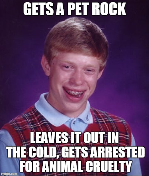 Bad Luck Brian Meme | GETS A PET ROCK LEAVES IT OUT IN THE COLD, GETS ARRESTED FOR ANIMAL CRUELTY | image tagged in memes,bad luck brian | made w/ Imgflip meme maker