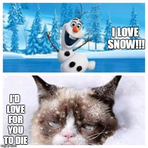 No more snow  | I LOVE SNOW!!! I'D LOVE FOR YOU TO DIE | image tagged in no more snow | made w/ Imgflip meme maker