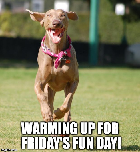 Jump for joy | WARMING UP FOR FRIDAY'S FUN DAY! | image tagged in jump for joy | made w/ Imgflip meme maker