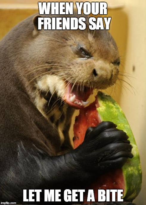 Self Loathing Otter | WHEN YOUR FRIENDS SAY LET ME GET A BITE | image tagged in memes,self loathing otter | made w/ Imgflip meme maker