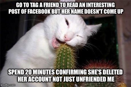 GO TO TAG A FRIEND TO READ AN INTERESTING POST OF FACEBOOK BUT HER NAME DOESN'T COME UP SPEND 20 MINUTES CONFIRMING SHE'S DELETED HER ACCOUN | image tagged in cactus,AdviceAnimals | made w/ Imgflip meme maker