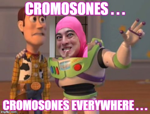 b0ss | CROMOSONES . . . CROMOSONES EVERYWHERE . . . | image tagged in pink guy,autism,canser,x x everywhere | made w/ Imgflip meme maker