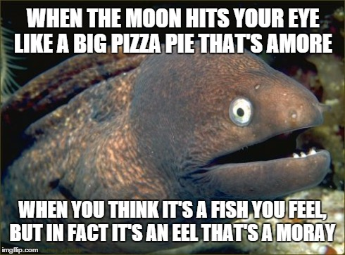I doubt anyone will get the joke, but it made my friends laugh. | WHEN THE MOON HITS YOUR EYE LIKE A BIG PIZZA PIE THAT'S AMORE WHEN YOU THINK IT'S A FISH YOU FEEL, BUT IN FACT IT'S AN EEL THAT'S A MORAY | image tagged in memes,bad joke eel,puns,disney | made w/ Imgflip meme maker