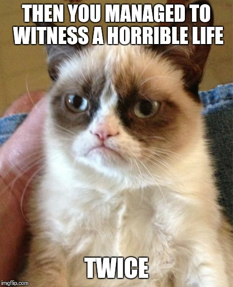 Grumpy Cat Meme | THEN YOU MANAGED TO WITNESS A HORRIBLE LIFE TWICE | image tagged in memes,grumpy cat | made w/ Imgflip meme maker