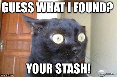 Cats | GUESS WHAT I FOUND? YOUR STASH! | image tagged in cats | made w/ Imgflip meme maker