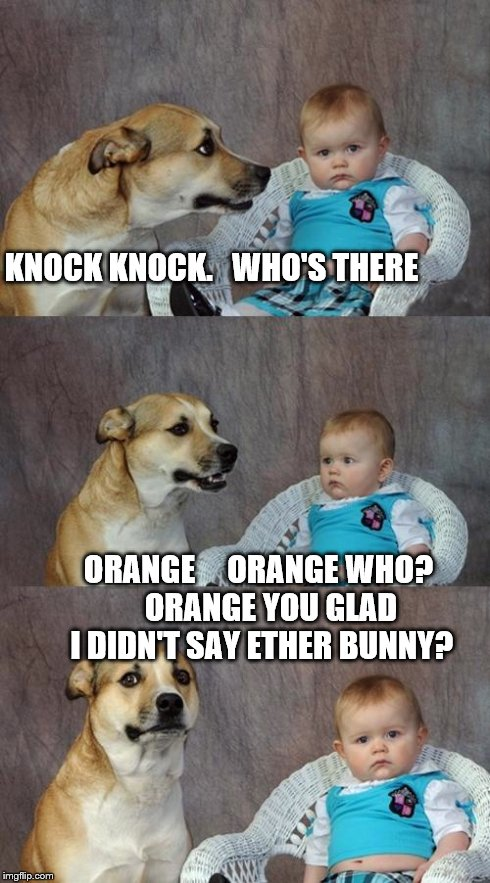 Dad Joke Dog Meme | KNOCK KNOCK.   WHO'S THERE ORANGE     ORANGE WHO?    ORANGE YOU GLAD I DIDN'T SAY ETHER BUNNY? | image tagged in memes,dad joke dog | made w/ Imgflip meme maker