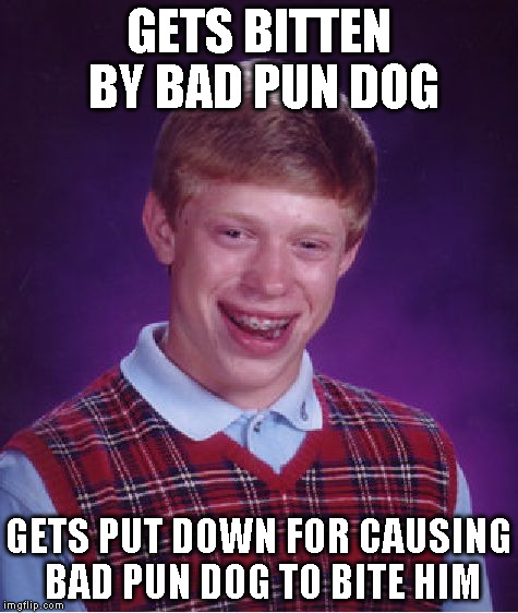 Bad Luck Brian Meme | GETS BITTEN BY BAD PUN DOG GETS PUT DOWN FOR CAUSING BAD PUN DOG TO BITE HIM | image tagged in memes,bad luck brian | made w/ Imgflip meme maker