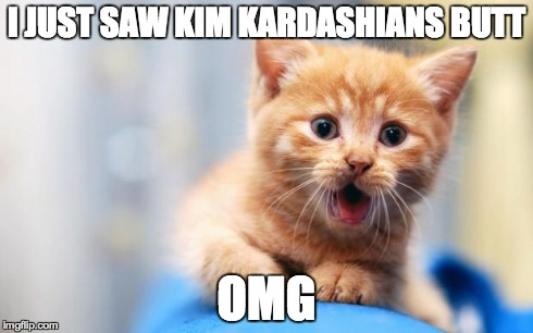 I JUST SAW KIM KARDASHIANS BUTT OMG | image tagged in omg cat | made w/ Imgflip meme maker