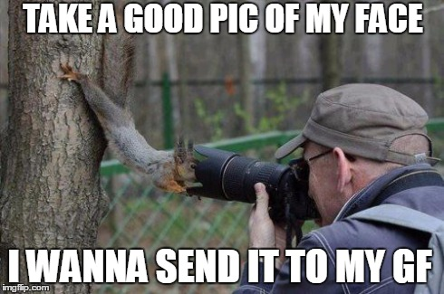 Jehovas Witness Squirrel | TAKE A GOOD PIC OF MY FACE I WANNA SEND IT TO MY GF | image tagged in memes,jehovas witness squirrel | made w/ Imgflip meme maker