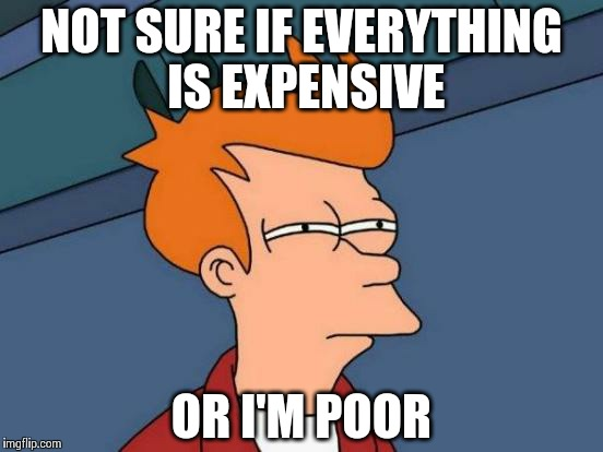Trying to buy my car parts like | NOT SURE IF EVERYTHING IS EXPENSIVE OR I'M POOR | image tagged in memes,futurama fry | made w/ Imgflip meme maker