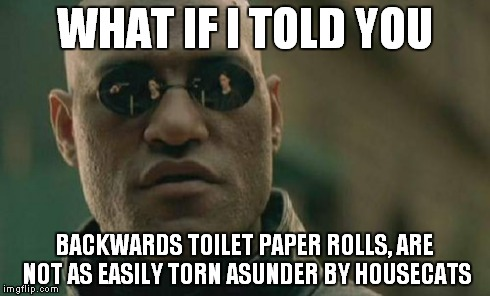 Matrix Morpheus Meme | WHAT IF I TOLD YOU BACKWARDS TOILET PAPER ROLLS, ARE NOT AS EASILY TORN ASUNDER BY HOUSECATS | image tagged in memes,matrix morpheus | made w/ Imgflip meme maker