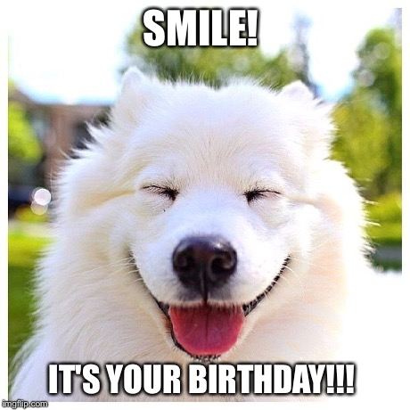 SMILE! IT'S YOUR BIRTHDAY!!! | image tagged in smile,birthday,happy birthday,dogs,dogsmile2,smiley | made w/ Imgflip meme maker