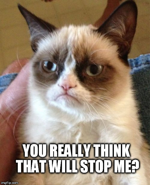 Grumpy Cat Meme | YOU REALLY THINK THAT WILL STOP ME? | image tagged in memes,grumpy cat | made w/ Imgflip meme maker