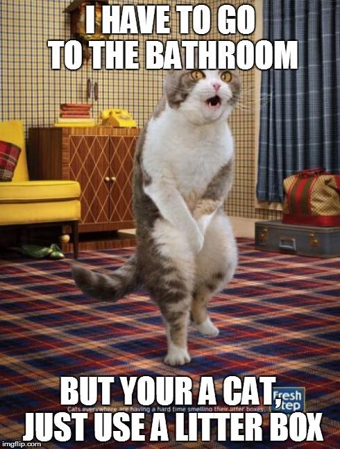 Gotta Go Cat Meme Imgflip