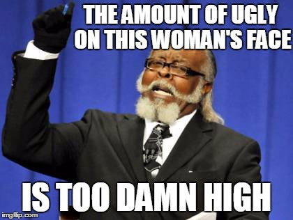 Too Damn High Meme | THE AMOUNT OF UGLY ON THIS WOMAN'S FACE IS TOO DAMN HIGH | image tagged in memes,too damn high | made w/ Imgflip meme maker