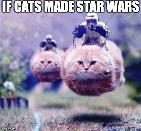Storm Trooper Cats | IF CATS MADE STAR WARS | image tagged in storm trooper cats | made w/ Imgflip meme maker